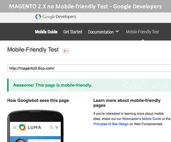 magento 2 mobile friendly test